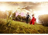 2013 theme wedding clothes lovers clothes chiffon wedding dress