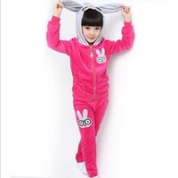 2013 winter clothing for children girls clothing children hoodies velvet long-sleeve sports clothing set