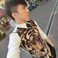 Autumn british style les tiger t pattern fashion long-sleeve shirt clot male shirt  free shipping