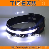 2013 New dog products hunting dog collar TZ-PET6100 with  free shipping MOQ 5 pcs