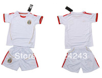 Free Shipping!Custom Name And Number 13/14 Season soccer kids home children soccer uniforms Mexico away kids