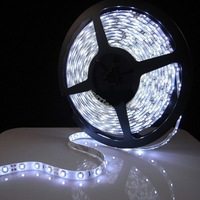 500CM Waterproof 5050 SMD Flexible LED Strip Lights 300 leds 12V DC with free shipping
