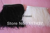 Cheapest Our Own Factory Dyed Trimmed Ostrich Feather