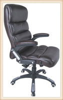 Multifunction Design Arm Chair Massage Chair