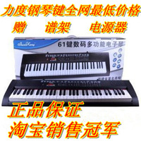 Shenkong orgatron 20066 61 key electronic piano key sk20066 violin child