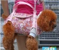 Одежда для собак ,