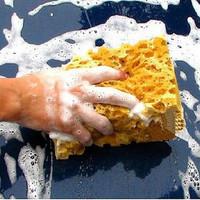 High quality large car wash sponge absorbent sponge coral foam cleaning sponge
