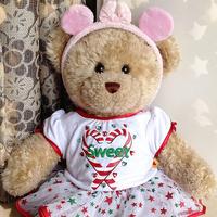 Original hanger build a bear duffy plush toy clothes christmas skirt set