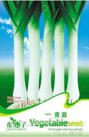 Free shipping 150 Leek seeds,,Hydrangea plant seeds,original pack seeds