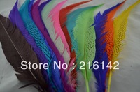 Free shipping 100pcs/color 24-28inch(60-70cm) Silver Pheasant Tail Feathers AAA quality for costumes