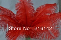 FREE SHIPPING Wholesale 100pcs/lot 12-14inches Red Ostrich Feathers plumes for feather Centerpieces Home Decor