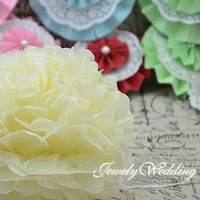 Free shipping 10 pieces Ivory Tissue Paper Poms Flower Balls 4 specifications you choose Wedding Party Shower Decoration
