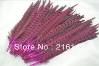 Free shipping Wholesale 100pcs/lot 14-16inch(35-40cm) Fushia Ringneck Pheasant Tail Feathers AAA quality