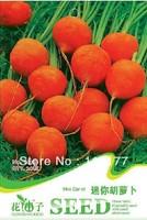 Free shipping 150 Daucus carota L. seeds,,Hydrangea plant seeds,original pack seeds