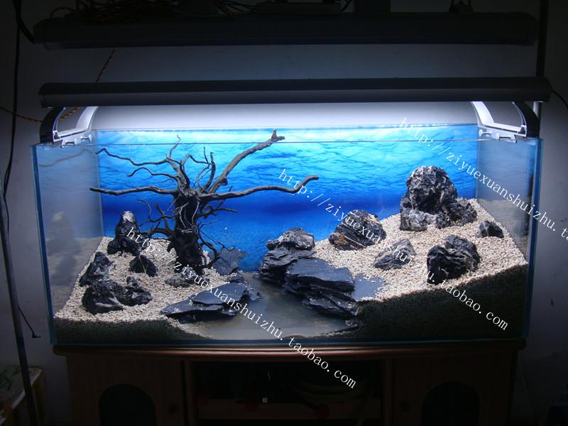 Черный аквариум в дизайне