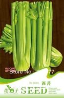 Free shipping 150 Apium graveolens L. seeds,,Hydrangea plant seeds,original pack seeds