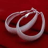Free Shipping Wholesale Sterling 925 Silver Earring,925 Silver Fashion Jewelry Web Hoop Earring For Women SMTE064