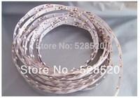 Free shipping!!!5m 300 LED 3528 SMD 12V flexible light 60 led/m,LED strip, white/warm white/blue/green/red/yellow