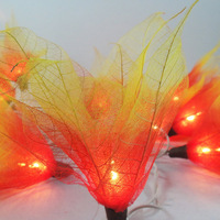 20 Fire Bodhi Leave Flower Fairy Lights String 3.5M Home Accent Floral Decor