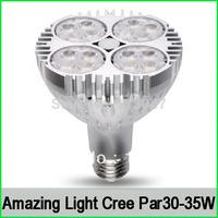 2X 120v cree led Par30 35w e27 led spotlight ceiling down light white(5000K) &warm white(3000k) transparent base Free shipping
