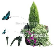 popular flying butterfly
