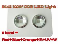 6 band red+blue+orange+white+ IR+UV 100W G3 PRO SERIES 2*50W COB LED grow Light  Hot selling 2 years Warranty 120 angle