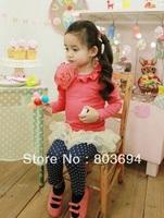 Wholesale flower girls 2pcs suit tutu top   leggings pants, 5set/lot, free shipping AF78