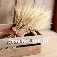 Free Shipping (500 Pcs/Lot)Zakka Natural Hay Dried Flowers Self-Shade Wheat Ear Bow