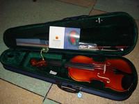 Cotton v182 violin dapperly -