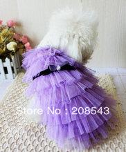 doggie dress promotion