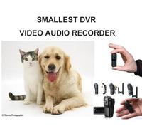 CAT DOG COLLAR MOUNTED CAM KITTY CAMERA SMALLEST VIDEO AUDIO DVR RECORDER MD80 SPORT MINI DV WEBCAM