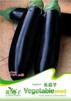 1 Pack 30 Seed  Purple Eggplant Seeds Vegetable Seed Green Food Hot C041