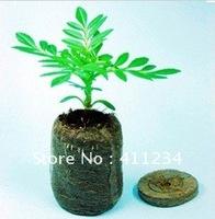 Jiffy Soil Pellets Seeds growing clod 38mm Indoor Seed Starter Start Planting Indoors for Planter Pot