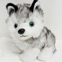 Wholesale Genuine AURORA Siberian Husky Plush Doll Simulation Dog Q Version Huskies Dog Toys Purebred Blue-Eye  Medium 22cm Gray