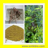 1000g[Discount] Chinese Thorowax Root Extract / Radix Bupleuri Chinensis extract 10:1