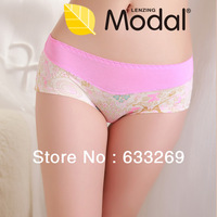 DD&SS Women's Floral Printing Underwear High Quality Seamless Slim Briefs Women 8819 Free Shipping