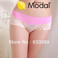 DD&SS Women's Floral Printing Underwear High Quality Seamless Slim Briefs Women 8819 Free Shipping