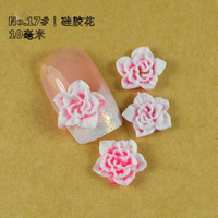 14ct Nail Art Ceramic Flowers, 3D Nail Art Flowers, Dried Flower for Nail Tip Decoration, No.17 Polymer Flower with Free Ship