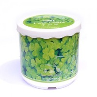 Free shipping Plant small gifts birthday home lucky grass