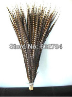 Free Shipping 20pcsslot 90-100cm natural Carnival Feathers Decor Side pheasant feather tail Lady Amherst Pheasant tail Feather