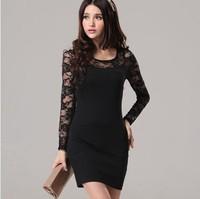 Womens Fashion Dress 2013 Free Shipping Autumn Winter Long Sleeve Beautiful Cheap dresses Women plus size Korean Lace Slim dress