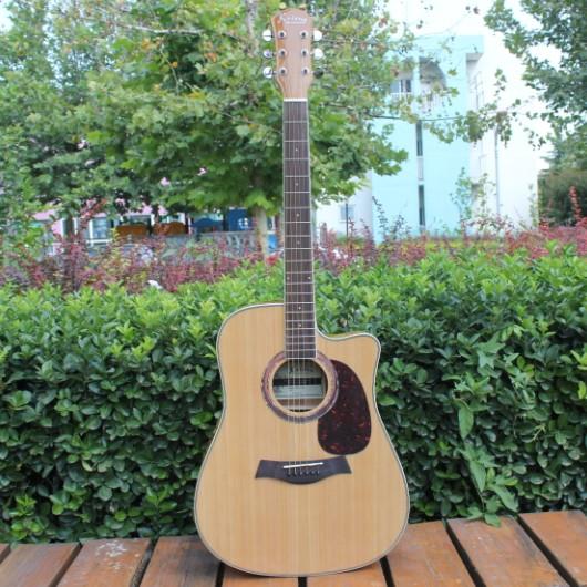 Catalpa Wood Guitars Spruce Panel Catalpa Wood