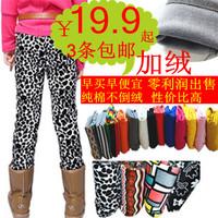 Children's clothing 2013 autumn and winter female child plus velvet 100% cotton legging warm legging pants child plus velvet