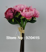hot pink peony promotion