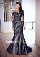 Long Sleeve Designer Stunning Evening Gown ,Social Occasion Dress 2013 with Lace Appliques