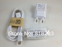 free  shipping 2A EU Wall Charger + MICRO 5 pin USB Cable + mic earphone For Samsung Galaxy S4 I9500 S3 I9300 Note2 N7100