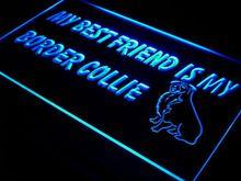 ADV PRO j477-b Best Friend Border Collie Dog Neon Light Sign(China (Mainland))