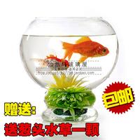 Large transparent glass fish tank goldfish bowl turtle tank turtle cylinder hydroponics vase