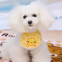 Free Shipping Chick bib for dogs pet accessories dog bib scarf muffler puppy scarf bibs