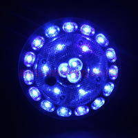 24 LED Bright Blue Car Vehicle Roof Ceiling Dome Interior Light Bulb Lamp DC 12V